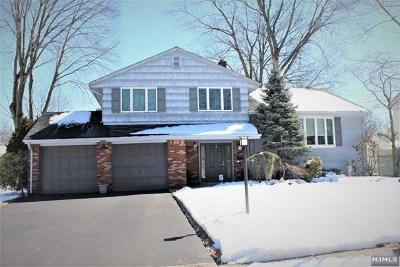 Paramus Single Family Home For Sale: 746 Walnut Street