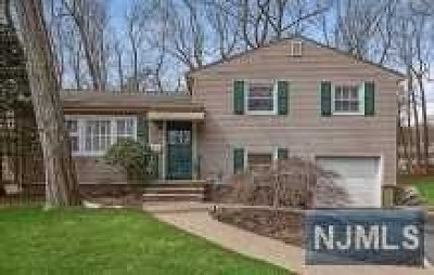 Essex County Single Family Home For Sale: 3 Countryside Drive