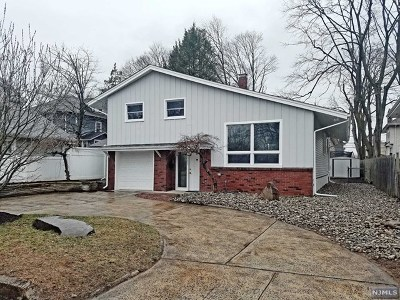 Bergen County Single Family Home For Sale: 162 Dumont Avenue