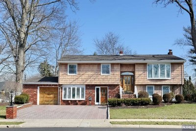 Emerson NJ Single Family Home For Sale: $599,000