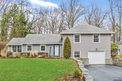 Ramsey NJ Single Family Home For Sale: $675,000