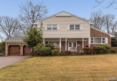 Oradell NJ Single Family Home For Sale: $879,000