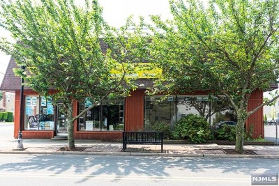 New Milford Commercial For Sale: 252 Main Street