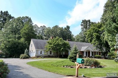 Old Tappan NJ Single Family Home For Sale: $1,349,000