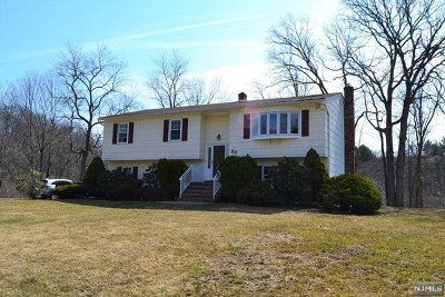 West Milford Single Family Home For Sale: 20 Albertine Place
