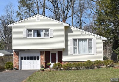 Tenafly Single Family Home For Sale: 277 Hickory Avenue