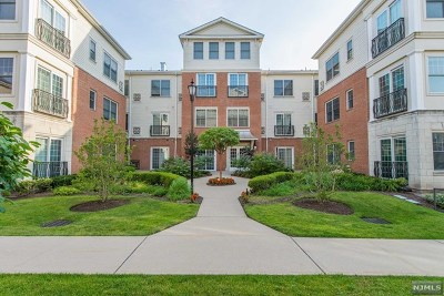 Tenafly Condo/Townhouse For Sale: 2213 The Plaza #2213