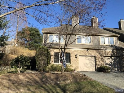 Mahwah Condo/Townhouse For Sale: 317 Vista View Drive