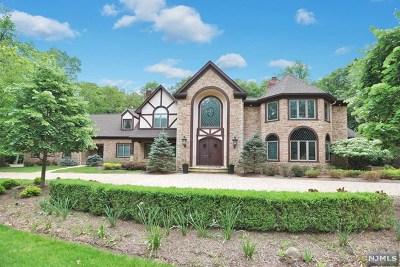 Franklin Lakes Single Family Home For Sale: 706 Horseshoe Trail