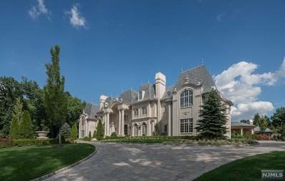 Alpine Single Family Home For Sale: 48 Rio Vista Drive