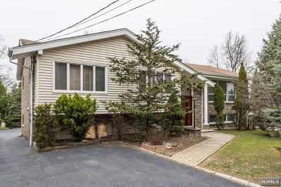 Little Falls Single Family Home For Sale: 94 Ridge Road
