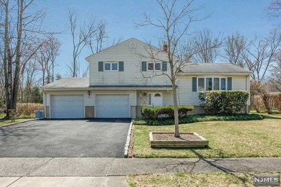 Closter Single Family Home For Sale: 96 Durant Lane