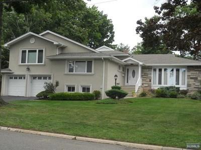 Englewood Cliffs Single Family Home For Sale: 63 John Street