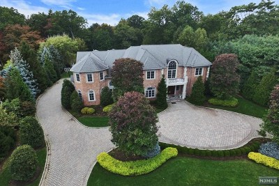 Cresskill NJ Single Family Home For Sale: $3,748,000