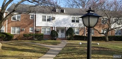 Elmwood Park Condo/Townhouse For Sale: 131 A River Drive