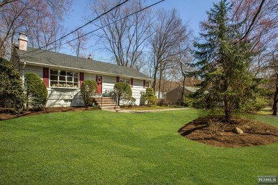 Hillsdale Single Family Home For Sale: 19 North Court