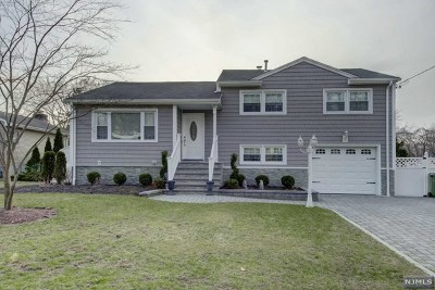 Paramus Single Family Home For Sale: 425 Abbott Road