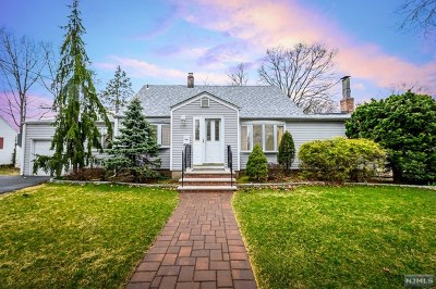 New Milford Single Family Home For Sale: 397 Pleasant Avenue