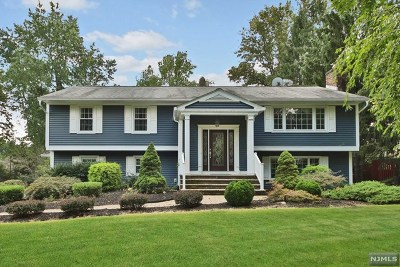 Montville Township Single Family Home For Sale: 6 Dahl Drive