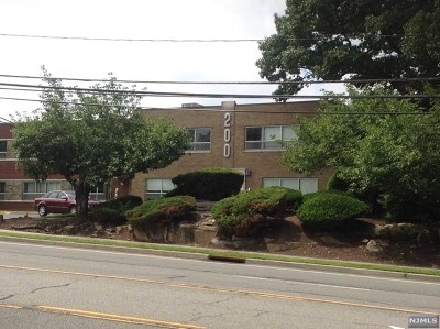 Englewood Cliffs Commercial For Sale: 210 Sylvan Avenue