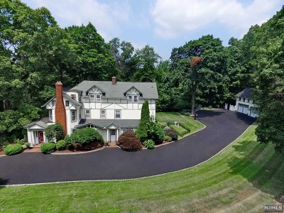 Alpine Single Family Home For Sale: 843 Closter Dock Road