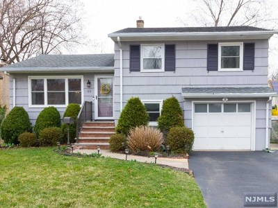 Morris County Single Family Home For Sale: 50 Roosevelt Avenue