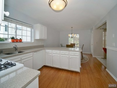 Morris County Condo/Townhouse For Sale: 178 Riveredge Drive