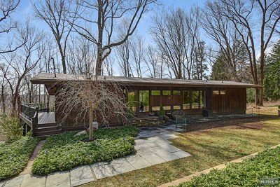 Morris Township Single Family Home For Sale: 4 Skyline Drive