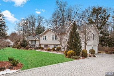 Woodcliff Lake Single Family Home For Sale: 29 Brookview Drive