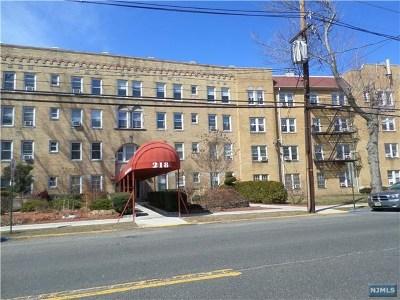 Leonia Condo/Townhouse For Sale: 218 Broad Avenue #4g