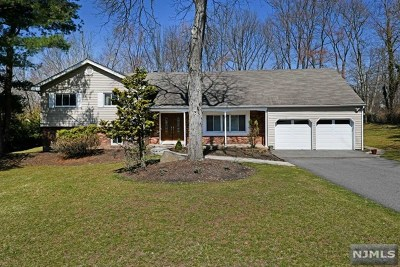Montville Township Single Family Home For Sale: 11 Montgomery Avenue