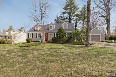 Morris Township Single Family Home For Sale: 15 Turtle Road