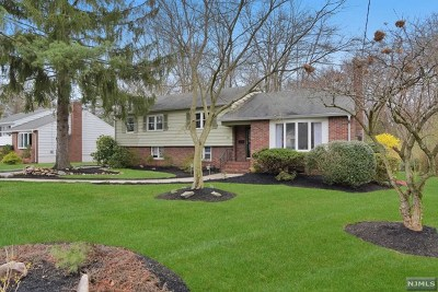 Cresskill Single Family Home For Sale: 485 Piermont Road