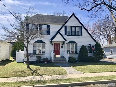 New Milford Single Family Home For Sale: 222 Monmouth Avenue
