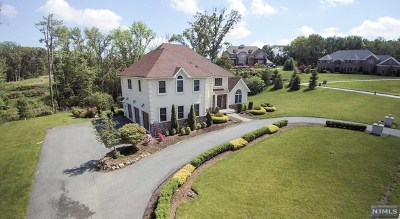 Morris County Single Family Home For Sale: 19 Gunthers View