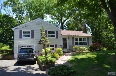 Cresskill Single Family Home For Sale: 84 11th Street