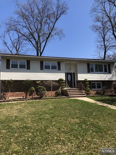 New Milford Single Family Home For Sale: 1125 Roosevelt Avenue