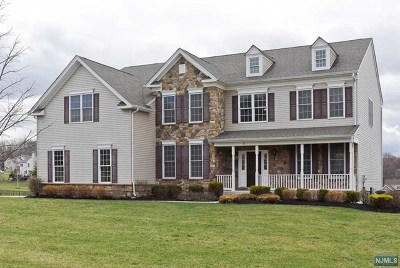 Morris County Single Family Home For Sale: 11 Marcin Way