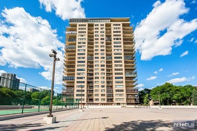 Edgewater Condo/Townhouse For Sale: 1203 River Road #21j