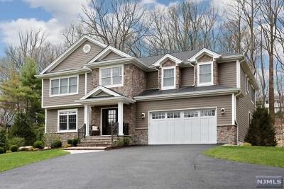 Park Ridge Single Family Home For Sale: 255 Park Avenue