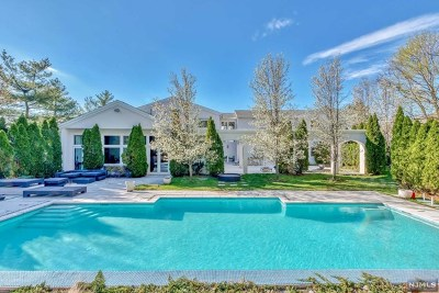Cresskill Single Family Home For Sale: 45 McGrath Drive