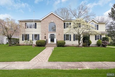 Cresskill Single Family Home For Sale: 14 Cherry Court