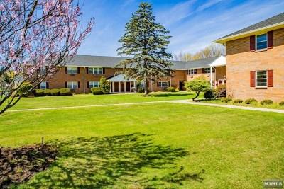 Park Ridge Condo/Townhouse For Sale: 197 North Maple Avenue