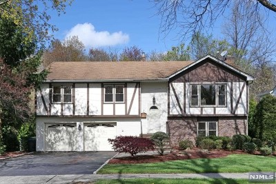 River Edge Single Family Home For Sale: 3 Kimberly Way