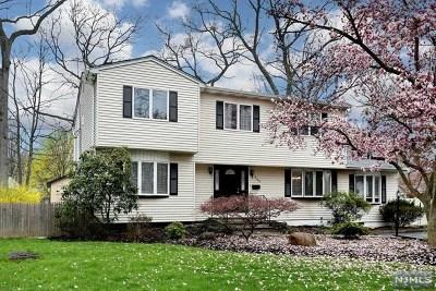 Park Ridge Single Family Home For Sale: 269 Rock Avenue