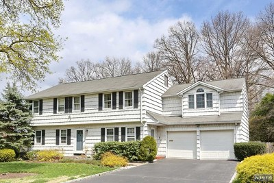 Englewood Cliffs Single Family Home For Sale: 4 Willow Drive