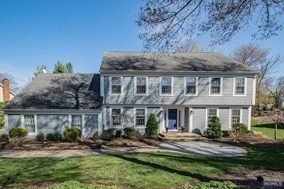 Wyckoff Single Family Home For Sale: 540 Long Drive