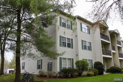 Morris County Condo/Townhouse For Sale: 62 Robertson Way