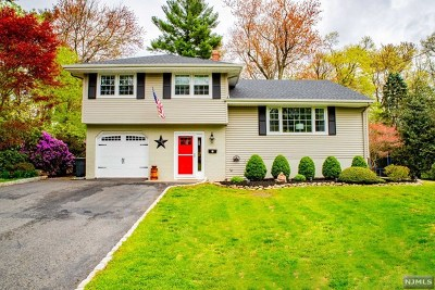 Montvale Single Family Home For Sale: 2 Meadow Lane