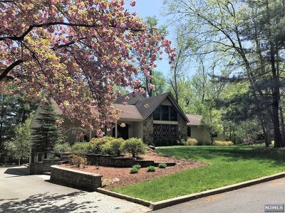 Woodcliff Lake Single Family Home For Sale: 29 Daniel Court